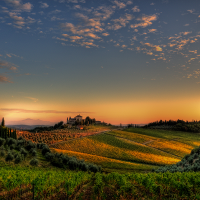 chianti wine tour (1)